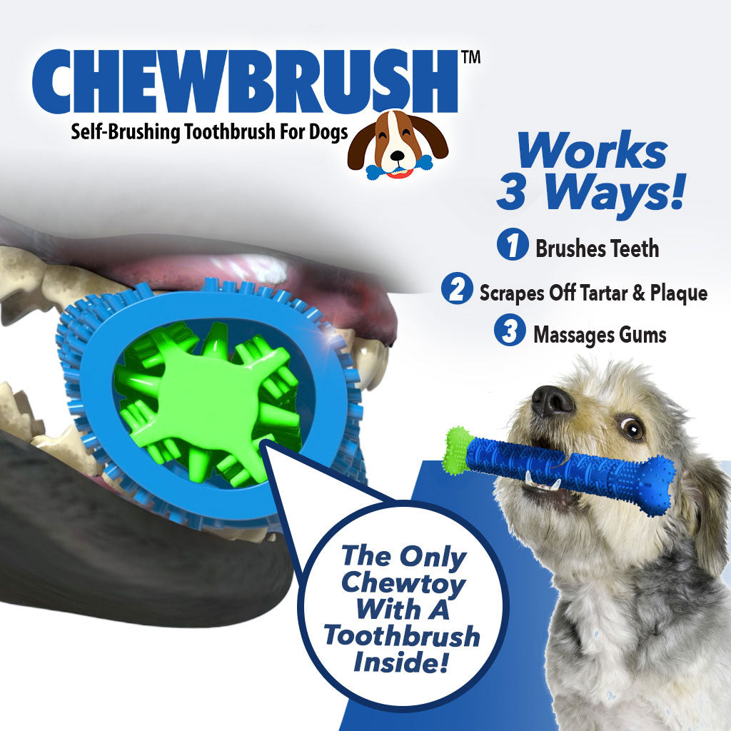 Product name in top left corner, a small dog holding a Chewbrush in its mouth,a dog's mouth chewing on a Chewbrush, includes text