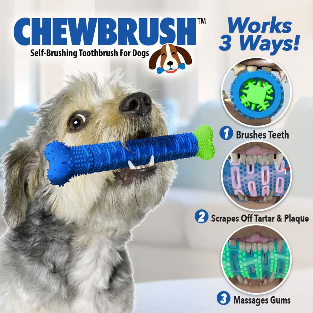 Product name in top left corner, a small dog holding a Chewbrush in its mouth, 3 small pictures in circles showing up close photos of a dog's mouth while chewing Chewbrush, includes text
