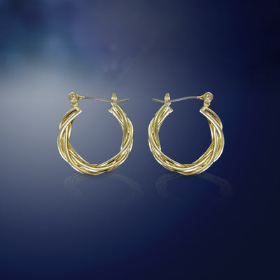 Entwined Braided Wire Hoops