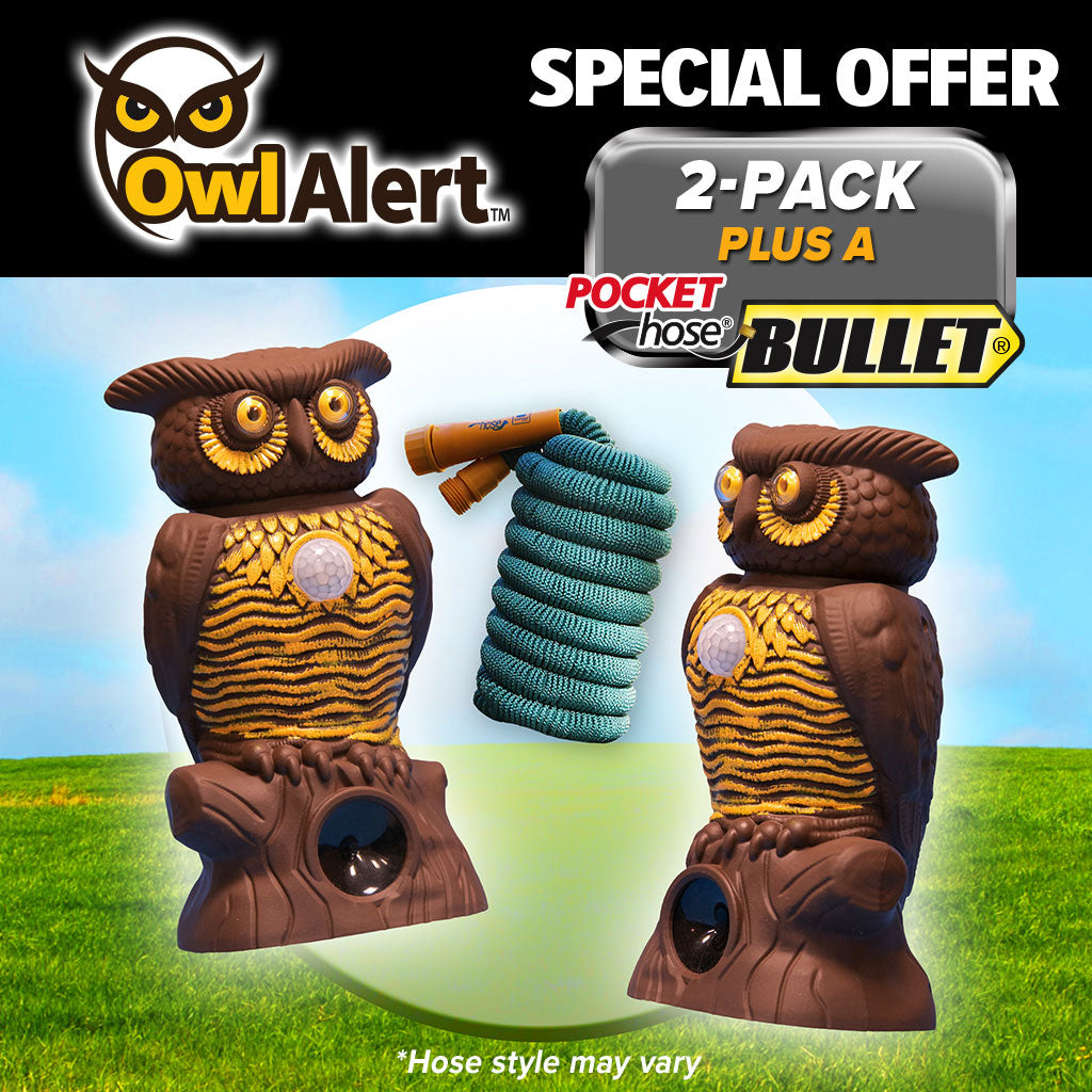 Owl Alert 2-Pack with Pocket hose bullet