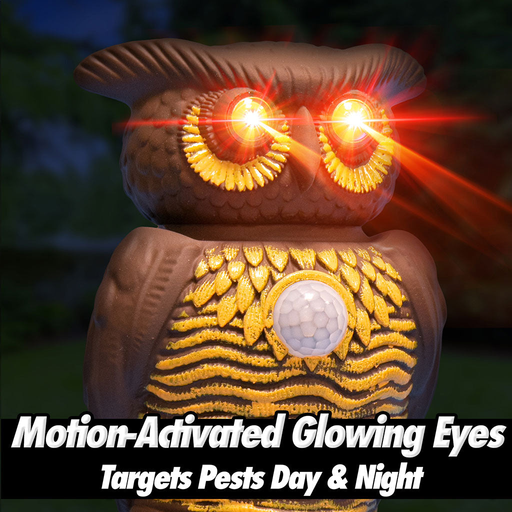 Owl Alert motion-activated glowing eyes