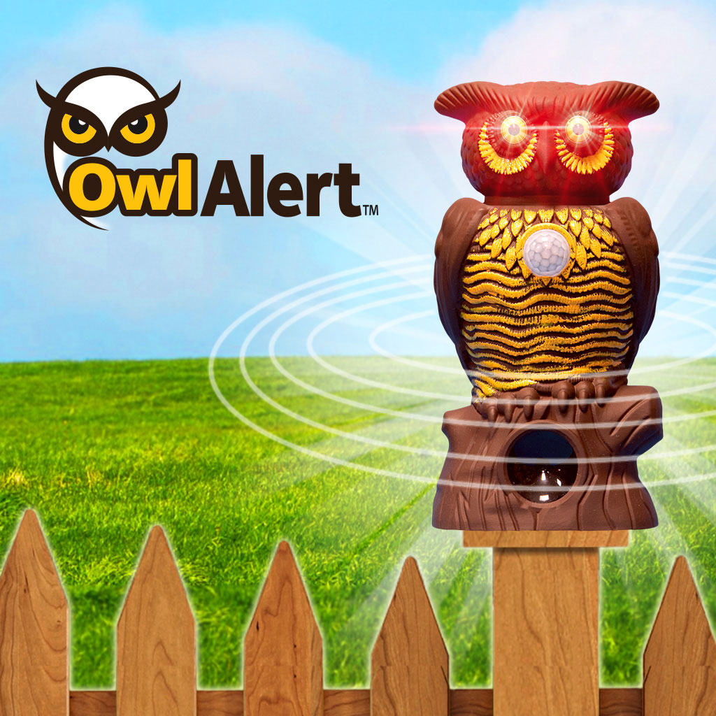 Owl Alert statue on a fence post