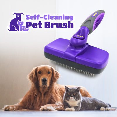 Self-Grooming Pet Brush