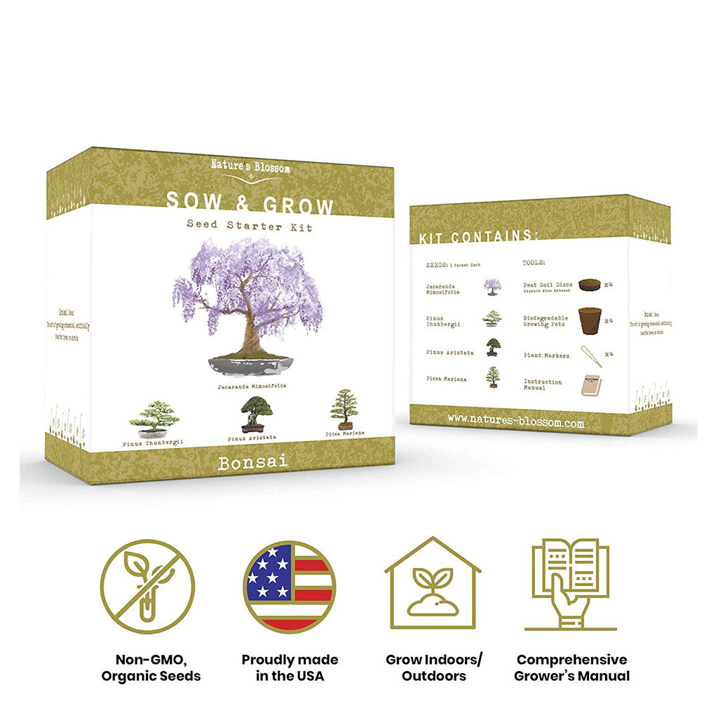 grow your own bonsai tree box with features and benefits