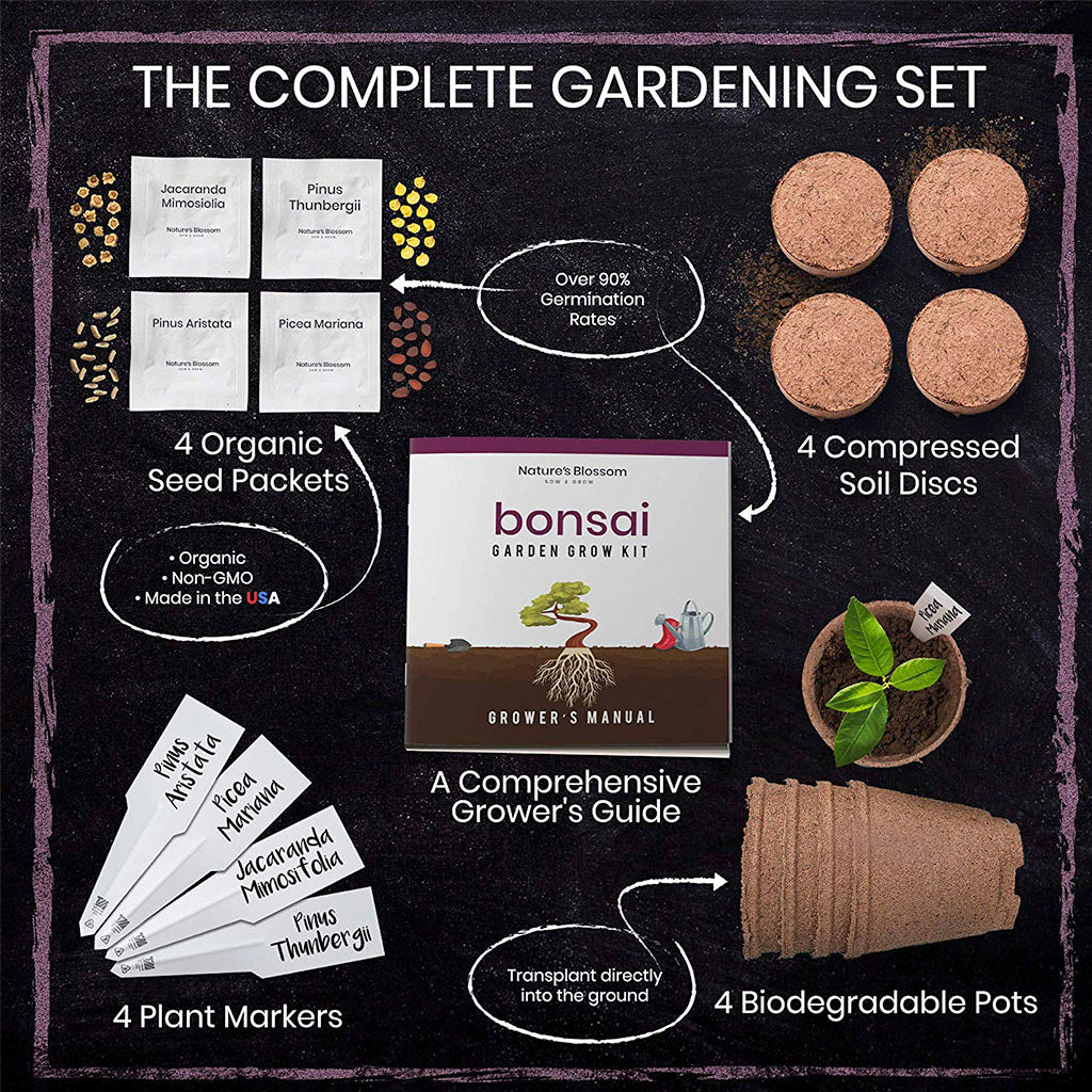 contents of grow your own bonsai set