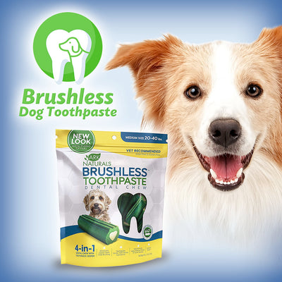 Brushless Dog Toothpaste