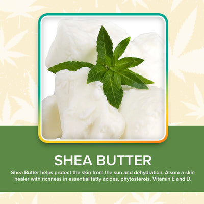 Herbal Body Moisturizer