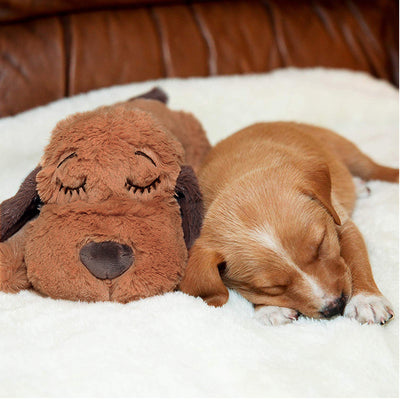 Plush Puppy Behavioral Aid Toy