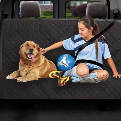 Dual Purpose Cargo / Back Seat Protector image from BulbHead