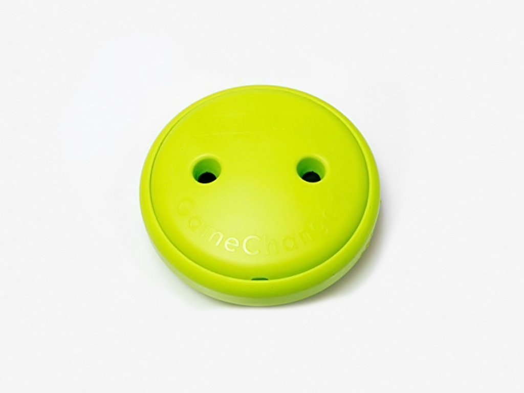 LIME GameChanger - The Ultimate Toy for Dogs image from BulbHead