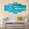 dolphin animals at the dolphinarium arena multi panel canvas wall art