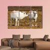 Reindeer in Spitzbergen Multi panel canvas wall art