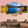 Colorful yellow autumn in Colorado, United States. wall art