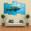 A Goliath Grouper Swims with Other Fish Multi Panel Canvas Wall Art