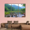 A small stream in morning mist in Nikko National Park in Japan Multi panel canvas wall art
