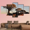 Sunrise at the Quiver Tree Forest near Keetmanshoop multi panel canvas wall art