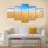 Ripe wheat field and blue sky with clouds Multi panel canvas wall art