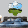 Green Field and forest Hill with blue sky hexagonal canvas wall art