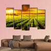 A Beautiful Sunset over a Barossa Vineyard multi panel canvas wall art