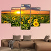 Field of blooming sunflowers on a background sunset Multi panel canvas wall art