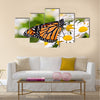 Colorful monarch butterfly sitting on chamomile flowers Multi Panel Canvas Wall Art