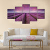 Beautiful lavender field Summer sunset landscape Multi panel canvas wall art