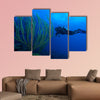 Diver and soft corals, Cayo Largo, Cuba Multi panel canvas wall art