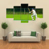 Cricket player in action Multi panel canvas Wall art