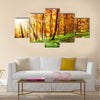 Sun in the autumn forest Multi panel canvas wall art