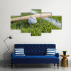 a baseball bat and ball on the grass near a field stripe Multi Panel Canvas Wall Art