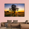 Sun rises over the Clare Valley, South Australia multi panel canvas wall art