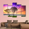 Lake Balaton with a very nice sunset at summer multi panel canvas wall art