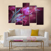 Bouquet of red tulips against a dark background and butterfly Multi Panel Canvas Wall Art