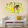 Monarch butterfly on yellow flower Multi Panel Canvas Wall Art