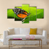 Tiger Longwing butterfly Heliconius hecale sitting on a green leaf Multi Panel Canvas Wall Art