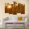 Wheat Crops in Sunset. Wheat Field Closeup Multi panel canvas wall art
