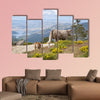 Two cows grazing in Casillas Mountain Pass, Iruelas Valley Natural wall art