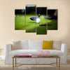 Golf ball on green meadow, driver Multi Panel Canvas Wall Art