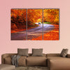 Red autumn sunny road with blurred car in deep Bulgarian wall art