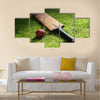 Cricket bat and ball on green grass of cricket pitch Multi Panel Canvas Wall Art