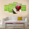 cricket bat on green grass of cricket pitch Multi panel canvas Wall art