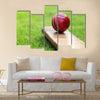 Cricket ball resting on a cricket bat on green grass Multi Panel Canvas Wall Art