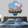 Fuji and Sakura at river in the morning hexagonal canvas wall art