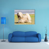 A small young light tan, fawn, beige, gray and white Lhasa Apso dog Multi Panel Canvas Wall Art