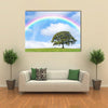 Blue Sky, Clouds, And Rainbow On The Back Side Of An Oak Tree In A Rainy  Weather, Multi Panel Canvas Wall Art