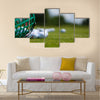Golf ball basket grass equipment leisure activity Multi Panel Canvas Wall Art