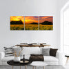 A sunflower field in Kansas with a beautiful sunset panoramic canvas wall art