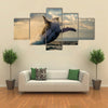 Jump Humpback Whale, The Water Area Of The Island Of St. Mary, Multi Panel Canvas Wall Art