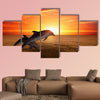 Marine life background - jumping dolphins, beautiful red sunset on sea Multi panel canvas wall art
