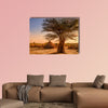 Africa, Ethiopia, huts in a Hamer village in the sunset light wall art